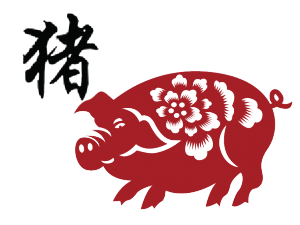 ANC-porco-300x225