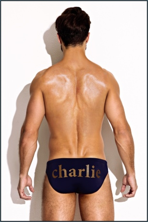 Charlie-Resort-2017-Collection-MZ4055-NAVY-GOLD-LIFEGUARD-BRIEF-BACK